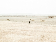 stephane-louesdon-alone-in-babylone-7